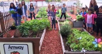 amway-quiere-educar-a-los-jovenes-en-nutricion-con-granjas-infantiles