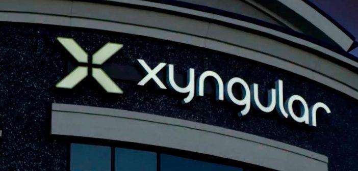 e78966775db Xyngular: qué es y cómo funciona [Guía Completa]